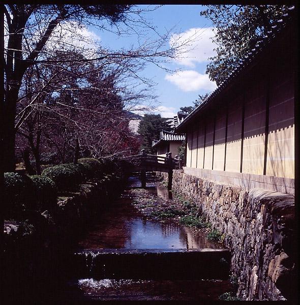 Daikakuji Moat © Dennis Mojado