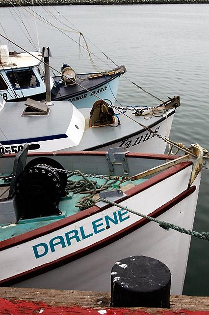 Darlene, Janus, Eleanor Marie © Dennis Mojado