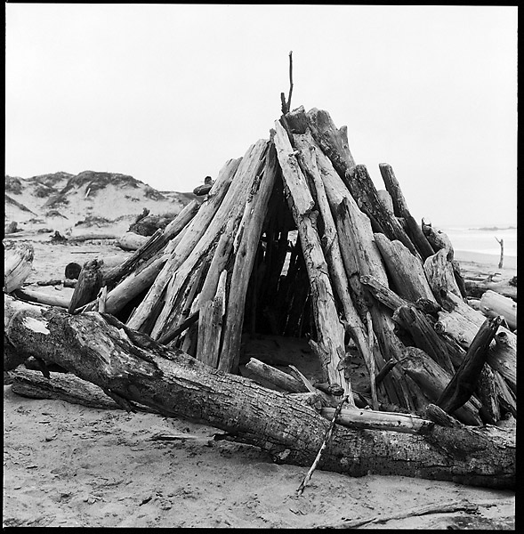 Driftwood Hut © Dennis Mojado