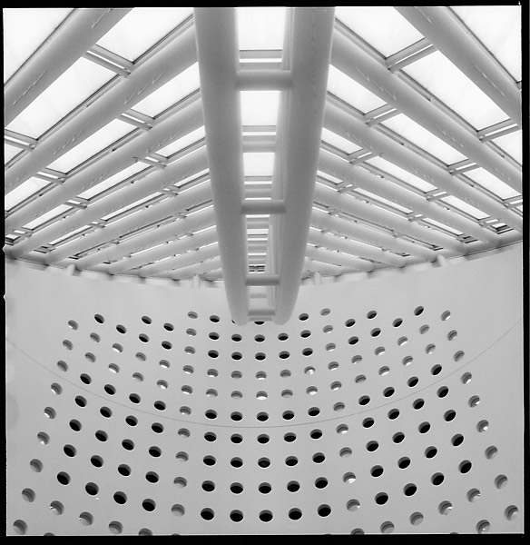 MOMA Roof © Dennis Mojado