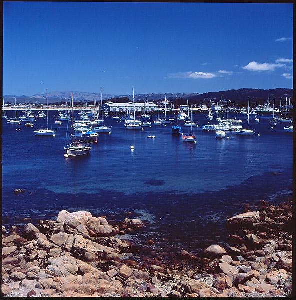 Monterey Bay © Dennis Mojado
