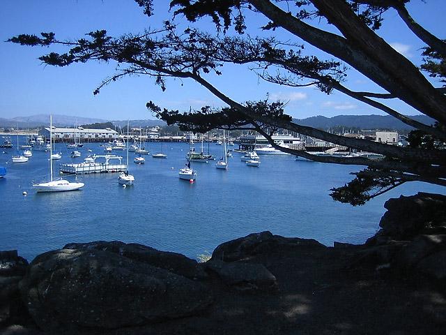 Monterey Boats © Dennis Mojado