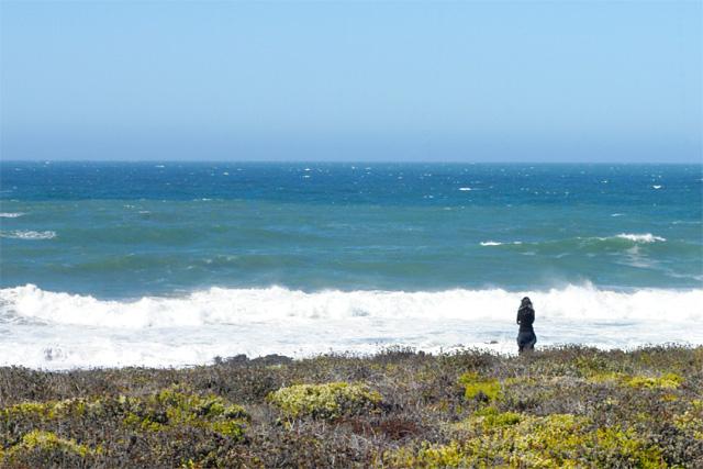 Ocean Watch © Dennis Mojado