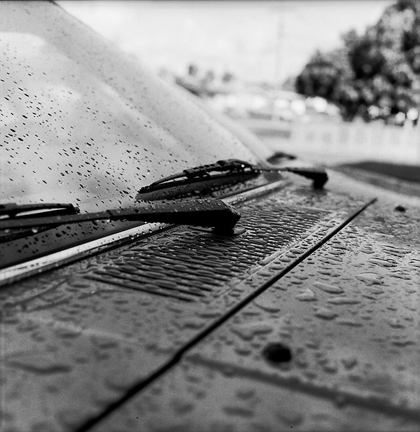 Raindrops © Dennis Mojado