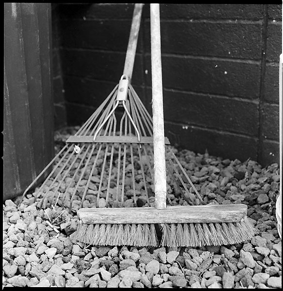 Rake and Broom © Dennis Mojado