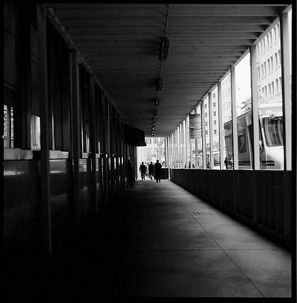 Tunnel Walkway © Dennis Mojado