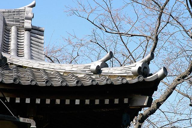 Ueno Roof © Dennis Mojado