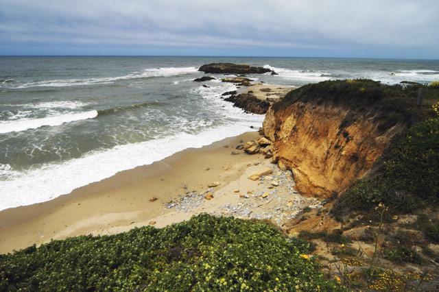 Pescadero State Beach (Wide) © Dennis Mojado