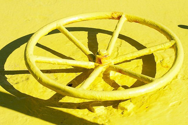 Yellow Hatchopener © Dennis Mojado