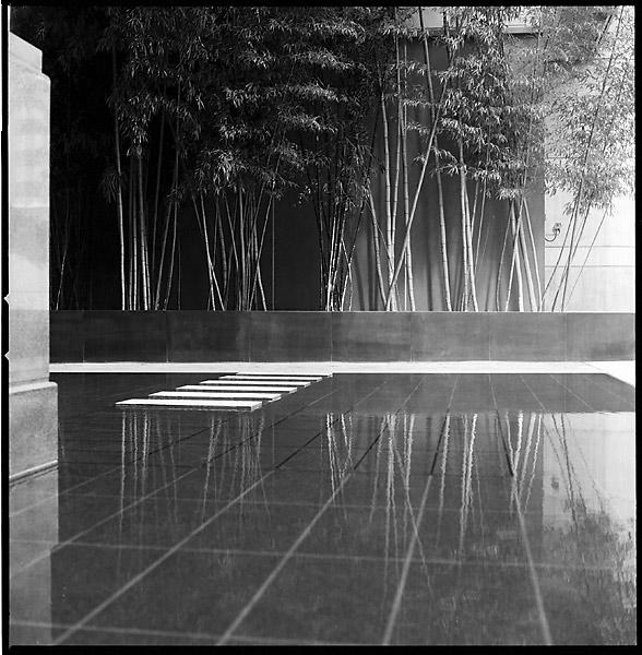 Zen Poolside II © Dennis Mojado